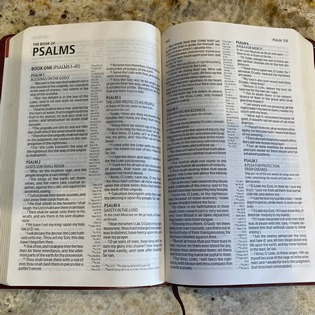 We are Living Psalm 2